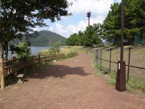 久々子湖畔遊歩道